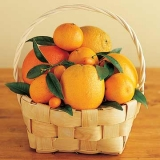 Fruit Basket-8