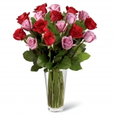24 Hot Red & Pink Roses