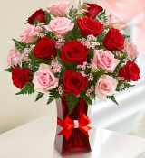 24 Red & Pink Roses