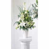 Traditional Sympathy White