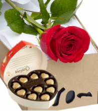 Single Rose in Box with Chocolate
