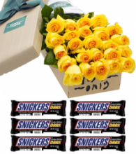 24 Yellow Rose Box w/ 6 Snickers Dark Chocolate