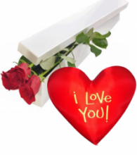 2 Red Roses Box with Wesley Heart Shaped Pillow