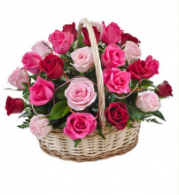 24 Mix Color Roses in Basket (same day delivery is available)