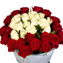 24 Red and White Rose in Bouquet