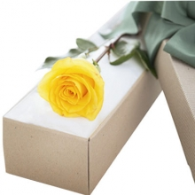 1pcs Yellow Rose in Box