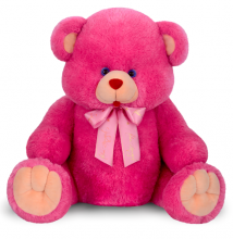 Deep Pink Color Teddy Bear