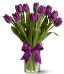10 pcs. Purple Tulip