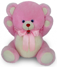 So Cute Pink Colour Teddy Bear