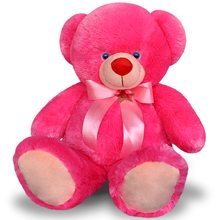 2 Feet 6 Inch Pink Teddy Bear