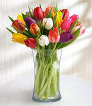 15  pcs. Multi Colored Tulip in Vase