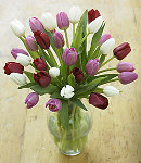 15 pcs Multi Colored Tulips in Vase