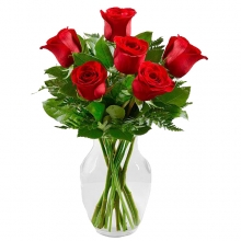 6 Imported Red Roses in Vase