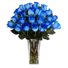 24 Pieces Alternate Blue Roses