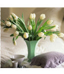 1 dozen fresh white tulips in green vase