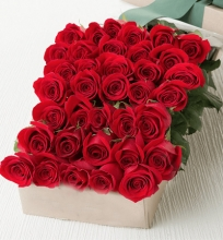 36 Red Rose in A Box