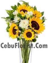 6 Piece Sun Flower in Vase