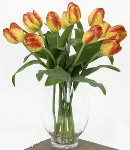 12 Holland Fresh Yellow Tulips in a Glass Vase