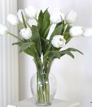 12 Fresh White Tulips in a Glass Vase
