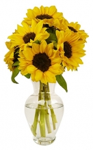 8 Pieces Sunflowers in Vase