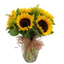 6 Sunflowers in Vase