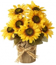 8 Pieces Sunflowers Bouquet