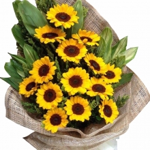 12 Sunflowers in Bouquet