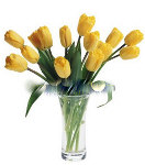 12 pcs. Fresh Yellow Tulip in Vase