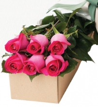 Half Dozen Pink Roses in a Box