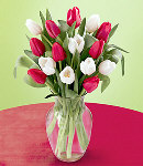 Romance Tulip 12 Stem in Vase