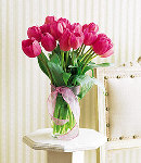 12 Stem Fresh Pink Tulips in a clear glass vase