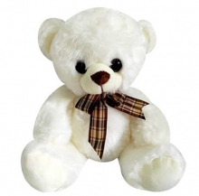 Small White Color Teddy Bear