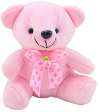 Small Size Pink Teddy Bear