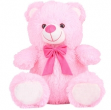 Small Pink Color Teddy Bear
