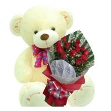2 Feet Cute Bear with 12 Red Roses Bouquet