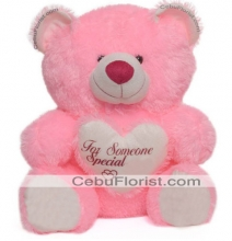 15 Inch Pink Color Teddy Bear