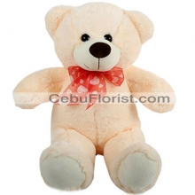 2 Feet Cream Color Teddy Bear