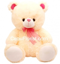 Cream Color 15 Inch Teddy Bear.