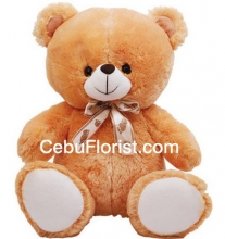Cute Brown Color Teddy Bear