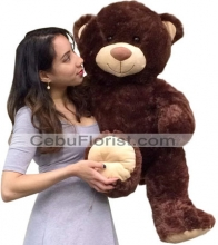 2 Feet Dark Brown Color Teddy Bear