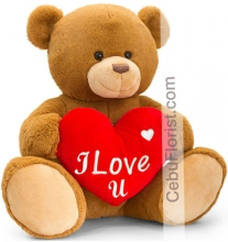 Teddy with I Love U Heart