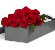 1 Dozen Red Roses In a Box
