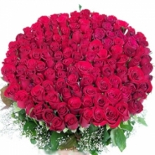 Romantic 100 Red Roses to your loved ones