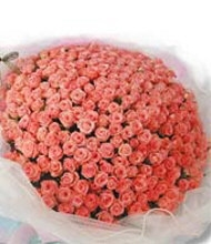 100 Peach Roses in Bouquet