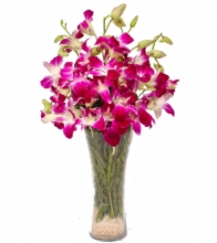 12 pcs. Pink Orchids in Vase