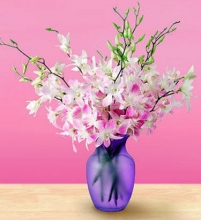 10 Stem Purple White Orchids  in Glass Vase