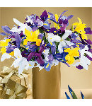 12 Stem Mixed Iris Flowers in a Vase.