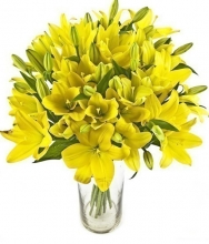 20pcs Yellow Lilies in a Vase