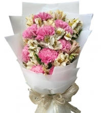 10pcs Pink Carnations  in a Bouquet