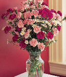 4 Dozen Pink & Red Carnations in a Glass Vase